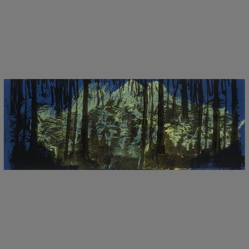 Wald_Duens-Lino_Unica-50x60cm_4