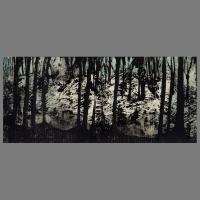 Wald_Duens-Lino_Unica-50x35cm_A
