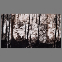 Wald_Duens-Lino_Unica-50x35cm_C