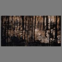 Wald_Duens-Lino_Unica-50x35cm_D