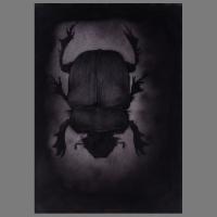 Torren+Kevers_2011-2013-Grafiet_Acrylaten(spuitflacons)-06