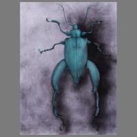 Torren+Kevers_2011-2013-Grafiet_Acrylaten(spuitflacons)-09